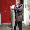 delphi_record_salmon_tony3