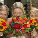 delphi_weddings_021